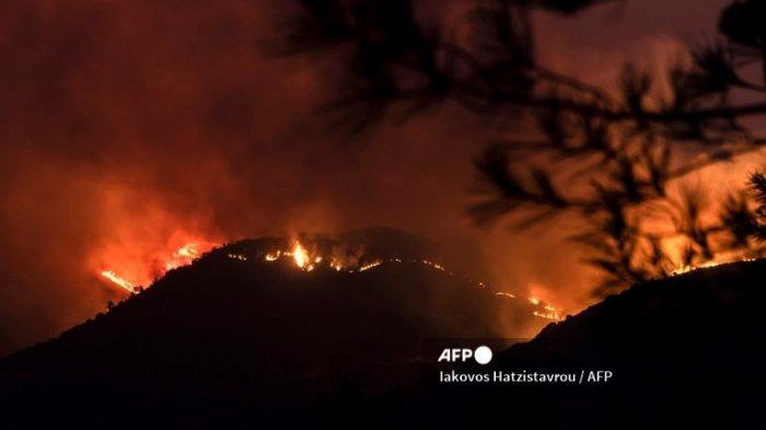 Arti Mimpi Kebakaran Hutan, Pertanda Baik?