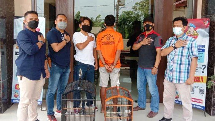 Curi Burung Kacer, Residivis Kasus Pencurian di Pringsewu Lampung Kembali Diamankan Polisi