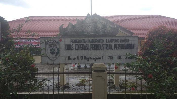 Dalam 3 Tahun, Total Sudah Ada 6 Ribuan UMKM di Lampung Barat