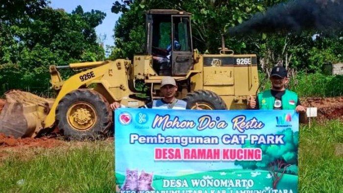 Desa Wonomarto Lampung Utara Bangun Taman Kucing, Dilengkapi Klinik dan Salon Perawatan
