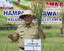 Sekretaris Daerah Provinsi Lampung Fahrizal Darminto menginformasikan bahwa berdasarkan Surat Undangan