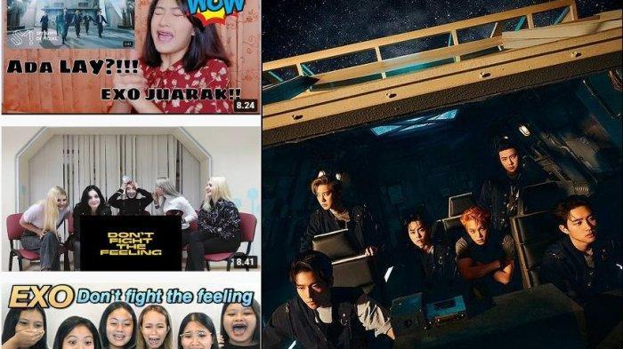 EXO-L Menangis Tonton MV Dont Fight the Feeling EXO, Cek Sebabnya