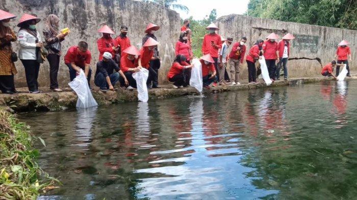 Peringati Hari Lahir Pancasila, DPC PDIP Tanggamus Tebar 4.800 Ekor Benih Ikan Nila di Gisting