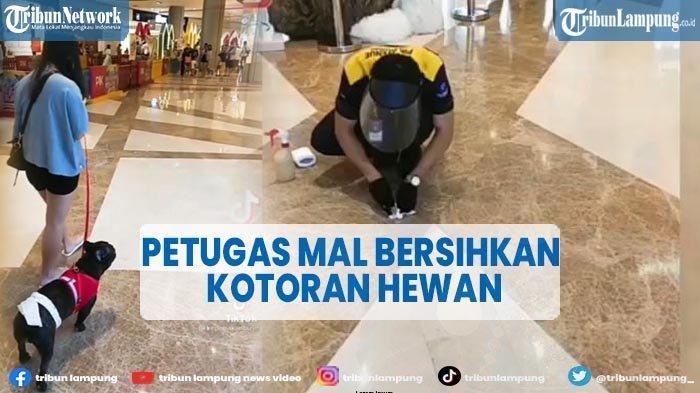 Cerita di Balik Video Viral Petugas Mal Bersihkan Kotoran Hewan Peliharaan Pengunjung
