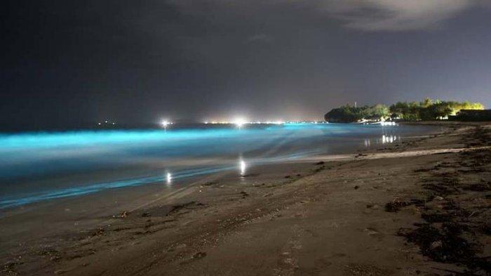 Fenomena Bioluminescene di Sepanjang Pantai Pesisir Barat, Peneliti Masih Lakukan Pengujian