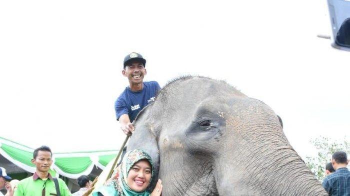 Festival Way Kambas di Lampung Timur