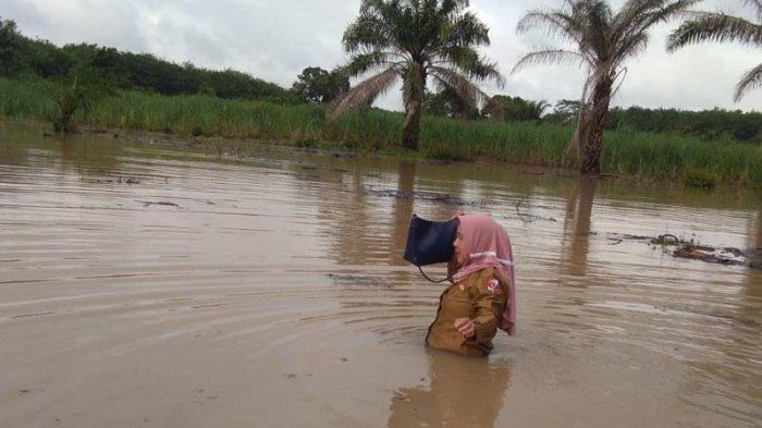 Demi Tugas, Guru SDN 3 Banjar Agung Nekat Berjalan Kaki Terobos Banjir Menuju Sekolah