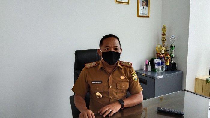 Harga Kedelai Impor di Bandar Lampung Naik hingga 33 Persen, Sentuh Rp 12 Ribu per Kg