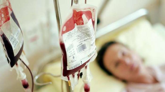 Apa Itu Hemofilia, Penyebab, Gejala, Pengobatan dan Pencegahan Hemofilia