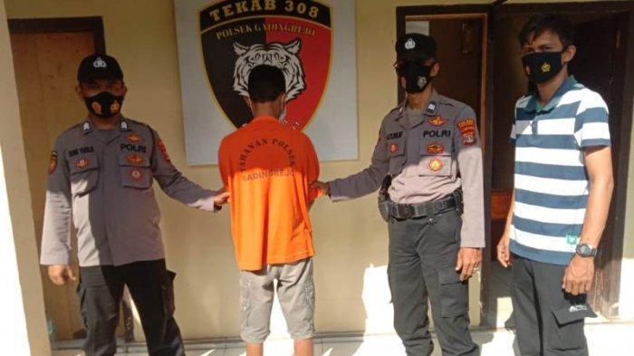 Identitas Pelaku Pencurian Sapi di Pringsewu Terungkap Setelah Berhasil Menangkap Sang Penadah