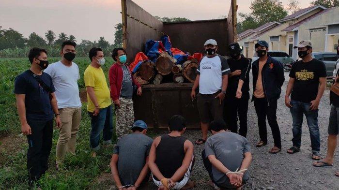 Ilegal Loging di Pesawaran Lampung Seret Aparatur Desa