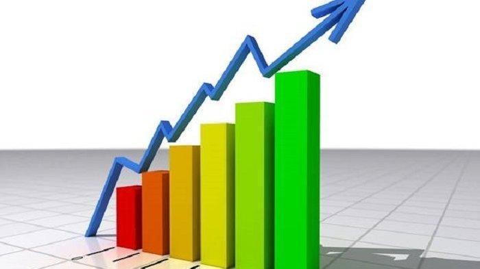 Apa Itu Inflasi dan Penyebab Terjadinya Inflasi