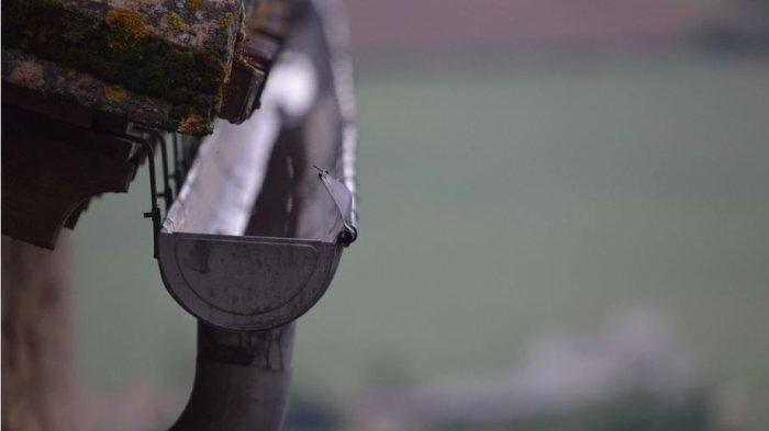 Info Rumah Terbaru, Tips Bersihkan Talang Air Mencegah Mampet