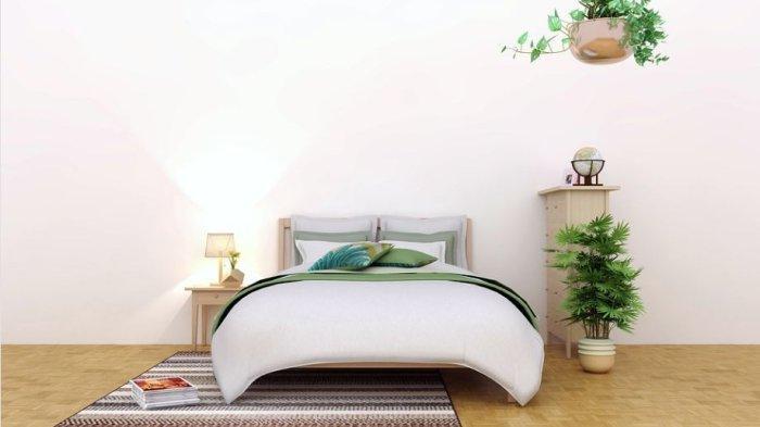 Info Rumah, Tips Mendekorasi Kamar dengan Tanaman Hias