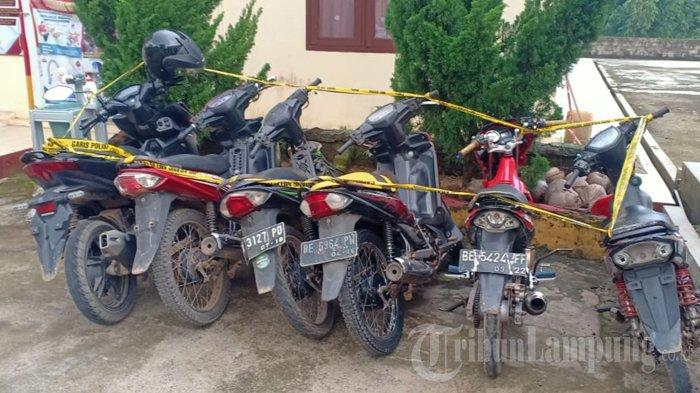 Informasi Bocor, Pelaku Sabung Ayam di Lampung Timur Sudah Kabur saat Polisi Gerebek Lokasi