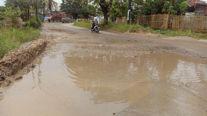 Mirip Kubangan Kerbau, Ruas Jalan Provinsi di Pringsewu Lampung Rusak Parah Berlubang