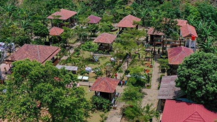 Kampoeng Kopi Rigis Jaya Jadi Desa Wisata Andalan di Lampung Barat