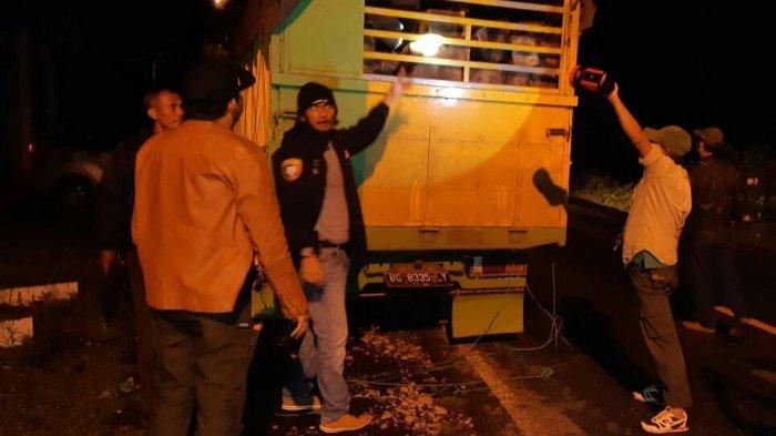 2 Warga OKU Tertangkap Basah Bawa Kayu Ilegal asal Register 39