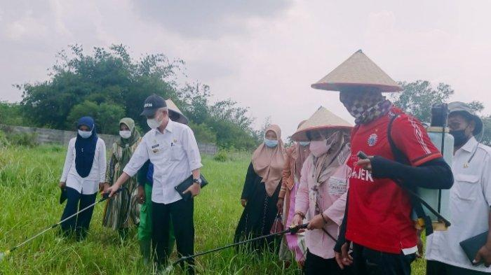 Mardiana Musa Ahmad Resmikan Lahan Agropark Lampung Tengah