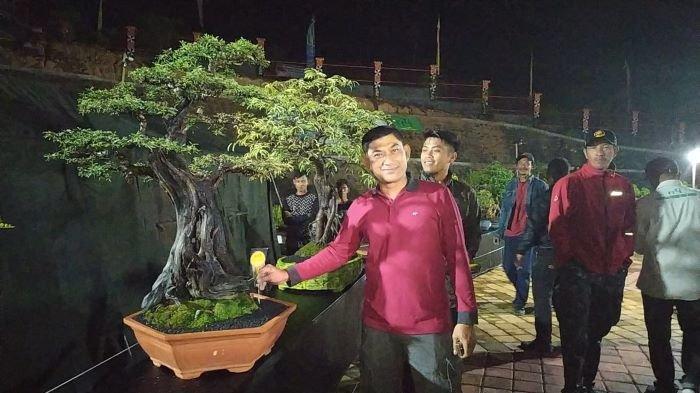 PPBI Lampung Barat Gelar Kontes Bonsai Nasional Juni 2021