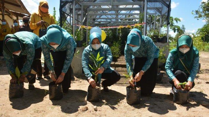 Ketua FKWT Lampung Tengah Ajak Masyarakat Gemakan Menanam Toga