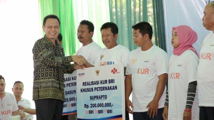 Gubernur Ridho Sambut Baik KUR Peternakan dan Optimistis Lampung Bakal Jadi Lumbung Pangan Dunia