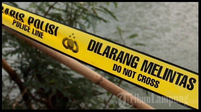 BREAKING NEWS Geger Lansia Pringsewu Lampung Ditemukan Meninggal di Sawah dengan Mulut Berbusa
