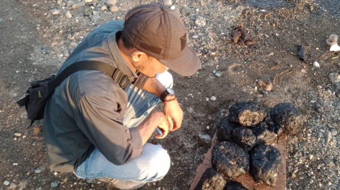 DLH Tanggamus Tunggu Hasil Pemeriksaan Material Limbah di Pantai Lampung