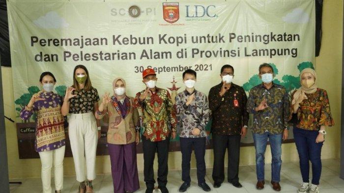 Louis Dreyfus Company Perpanjang Kemitraan Dukung Petani Kopi Lampung Barat