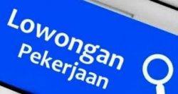Lowongan Kerja PT Tecma Mitratama Advertindo, Simak Posisi dan Syarat yang Dibutuhkan