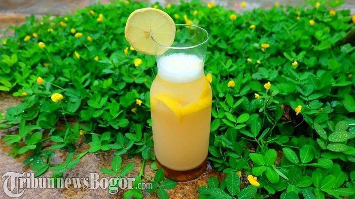 Manfaat Minum Air Hangat Dicampur Perasan Lemon saat Bangun Tidur Pagi