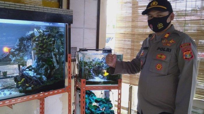 Melihat Koleksi Aquascape Milik Kapolsek Simpang Pematang AKP Agung