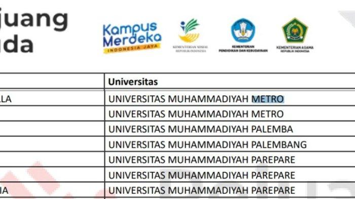 Dua Mahasiswa Kampus Terbaik Sumatera UM Metro Lolos Seleksi Pejuang Muda Gelombang I 2021