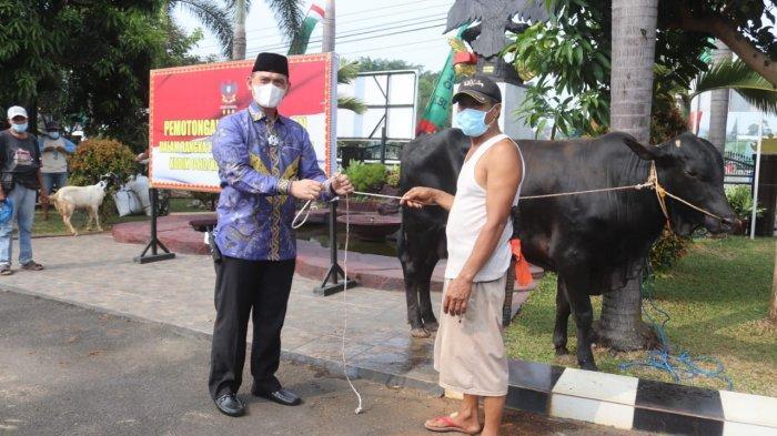 Dandim 0410 Romas Herlandes Serahkan Qurban 1 Sapi pada Hari Raya Idul Adha