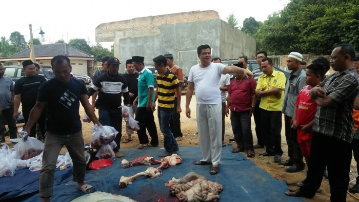 Musa Ahmad Kurban 1 Ekor Sapi di Yukum Jaya