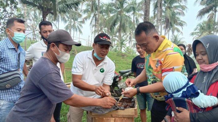 Beli Madu Panen Sendiri Sambil Berwisata di Omah Tawon Pringsewu Lampung