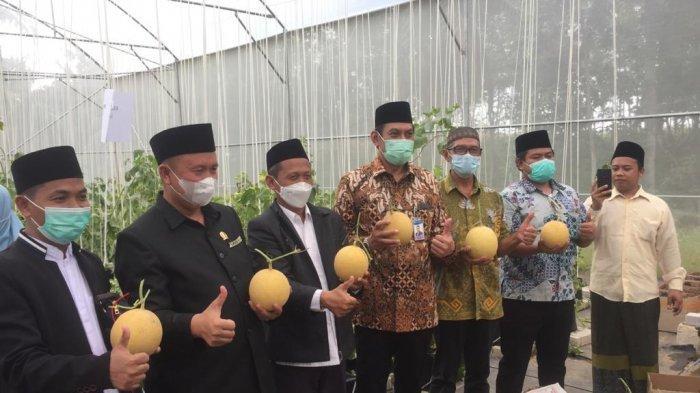 Kepala BI Lampung dan Hibitren Panen Perdana Melon Inthanon di Green House Ponpes Minhadlul Ulum