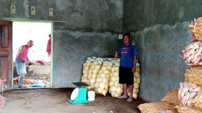 Pasca Demo, Sejumlah Harga Sayuran di Lampung Barat Mulai Naik