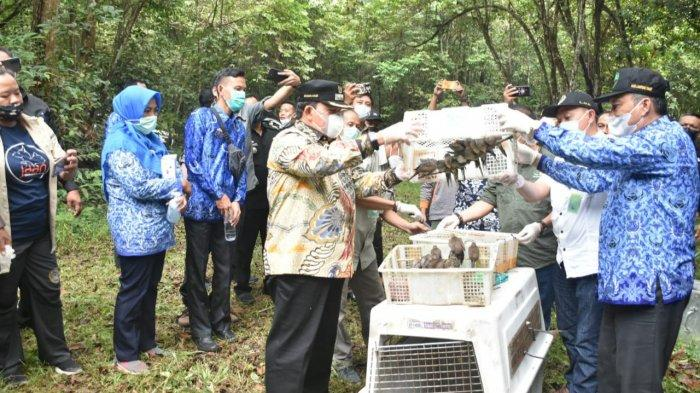 Pelepasan Satwa Liar, Azwar Hadi Singgung Aktivitas Ilegal di Kawasan Konservasi