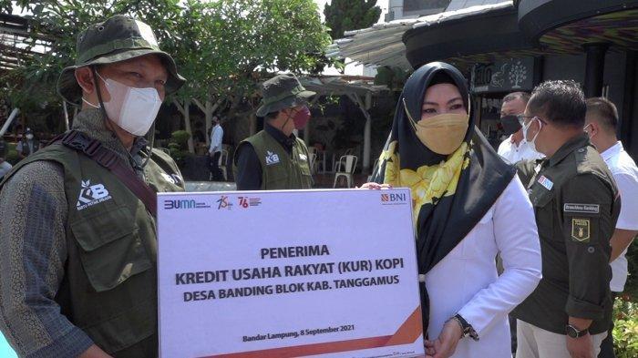 Petani di Tanggamus Lampung Bisa Nikmati KUR Rp 50 Juta dari BNI