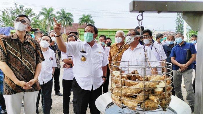Pemprov Lampung Sepakat Harga Singkong Rp 900 per Kg dari Petani