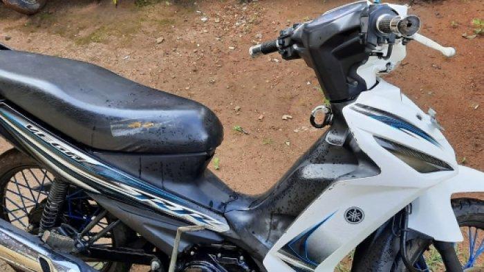 Petani di Lampung Tengah Jual Motor Pinjaman Rp 2,5 Juta