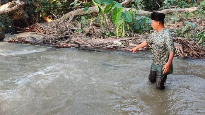 Petani di Pringsewu Lampung Tewas di Tepi Sungai Akibat Terjatuh dari Pohon Kelapa
