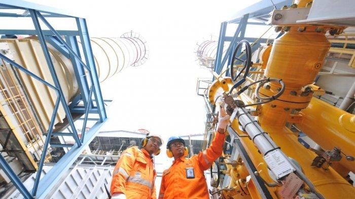 Sinergi Perusahaan Gas Negara dan Kebijakan Pemerintah, Dorong Pemulihan Ekonomi Nasional