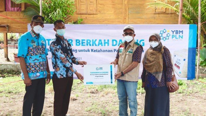 PLN UID Lampung Berbagi Berkah 600 Paket Daging Kurban dan 172 Paket Tebar Berkah Daging YBM