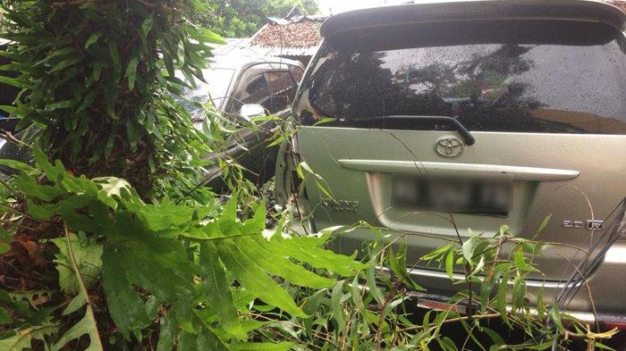 Pohon Tumbang di Parkiran Pasar Shopping Kota Metro Berusia Tua dan Sudah Lama