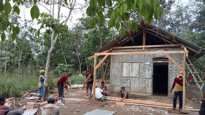 Kisah Sekeluarga di Mesuji Selamat saat Rumahnya Tertimpa Pohon Tumbang