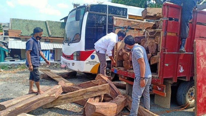 Polisi Bongkar Sindikat Illegal Logging Register 21 Pringsewu Lampung