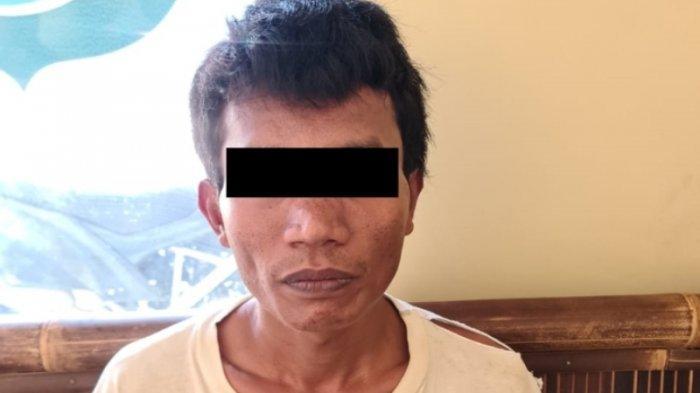 Polisi Lebih Dahulu Tangkap Rekan Pelaku Pencurian Kerbau di Lampung Tengah