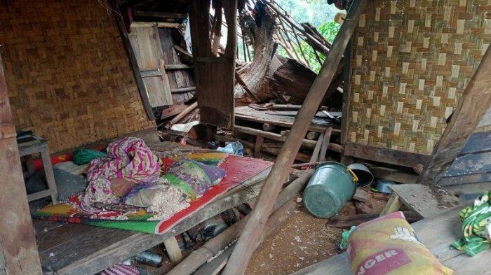 Puluhan Rumah Rusak Akibat Amukan Kawanan Gajah di Lampung Barat
